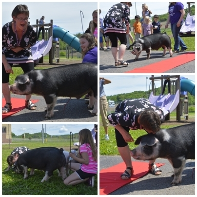 Mrs. Schoen kisses the pig