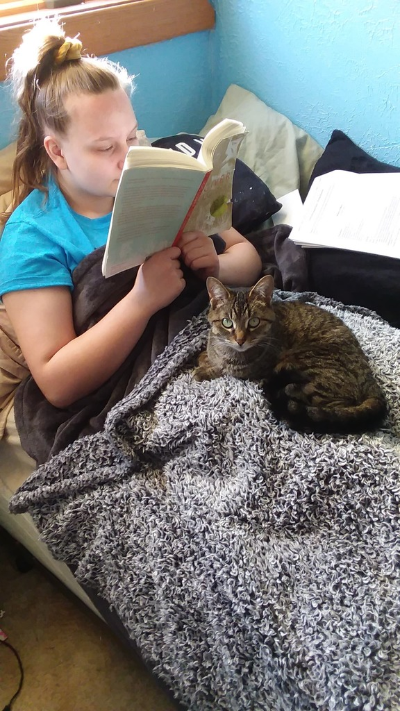 Newkirks read snuggled up with pets