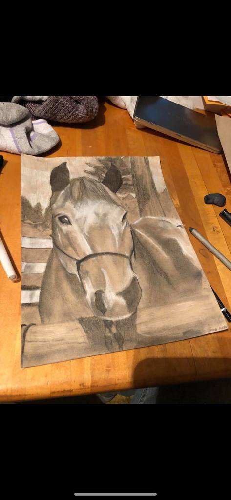 Jacob Mueller horse drawing