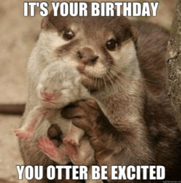 You otter be excited