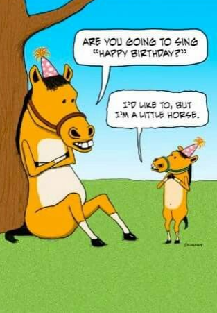Happy Birthday, but I'm a little horse