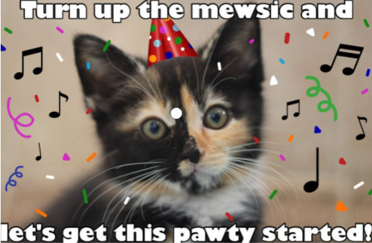 Turn up the Mew-sic for a birthday!